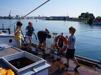 Crew for a Day: Summer Camp