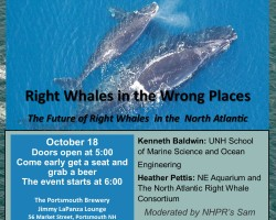 Pistcataqua Science Cafe: Right Whales in the Wrong Places